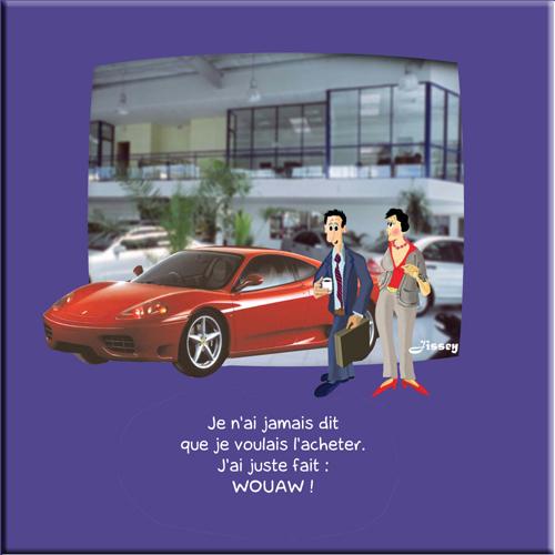 14_auto_anti_bobo_500